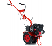 �������� ����� 5��-6,0 ��������� Briggs&Stratton Intek I/C (6 �.�.), ���������