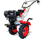 �������� ���� ���-1�3 ��������� Briggs&Stratton Vanguard (6.5 �.�.), ���������